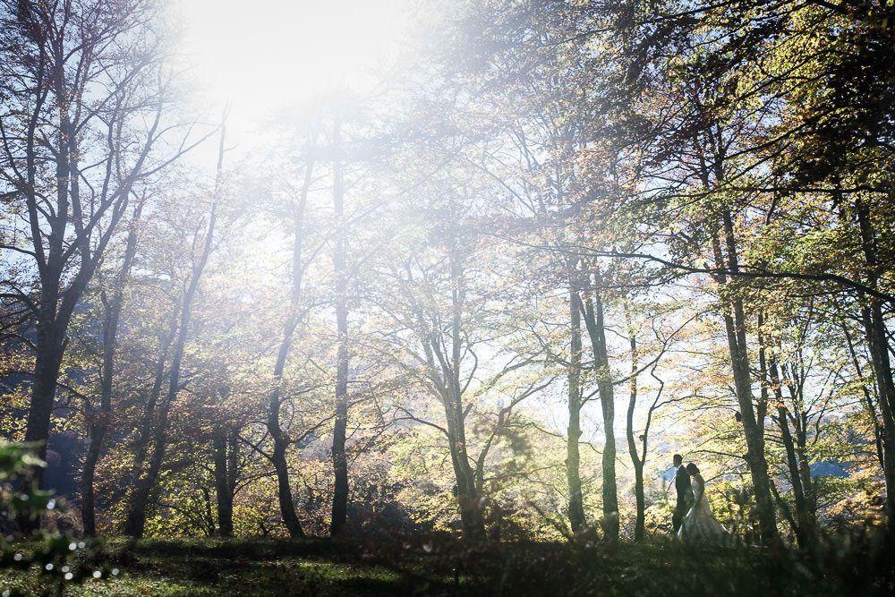fotos de nacho bueno bosque